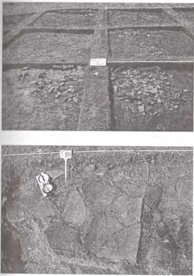 Рис. 1. городище Тэрэлжин Дэрэвэлжин. Скопления черепицы в раскопе