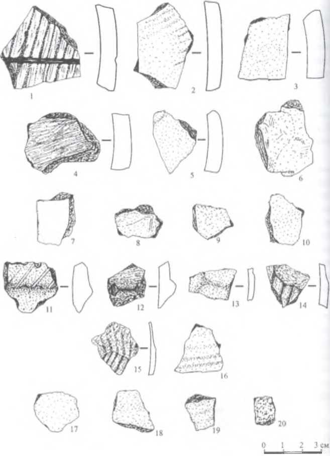 Рис. 2. Иволгинский район, стоянка Тологой-VI. Подъемный керамический материал